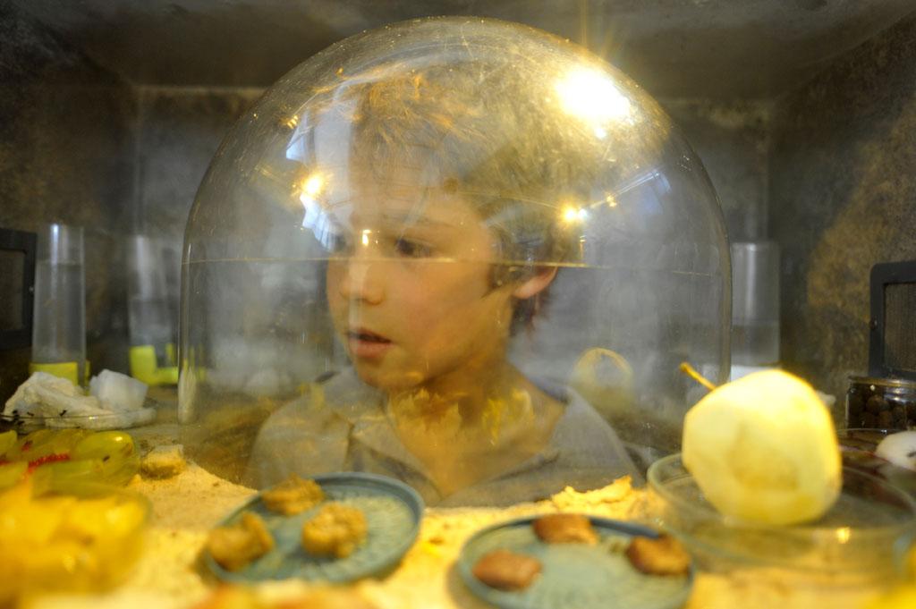 Dans la fourmilière(ouverture du diaporama)