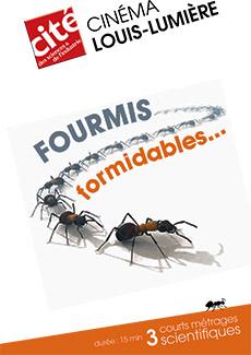 Affiche du programme cinéma : fourmis, formidables