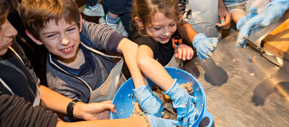 La cuisine p dagogique enfants parents festival de l 39 alimentation do eat yourself - Cuisine pedagogique ...