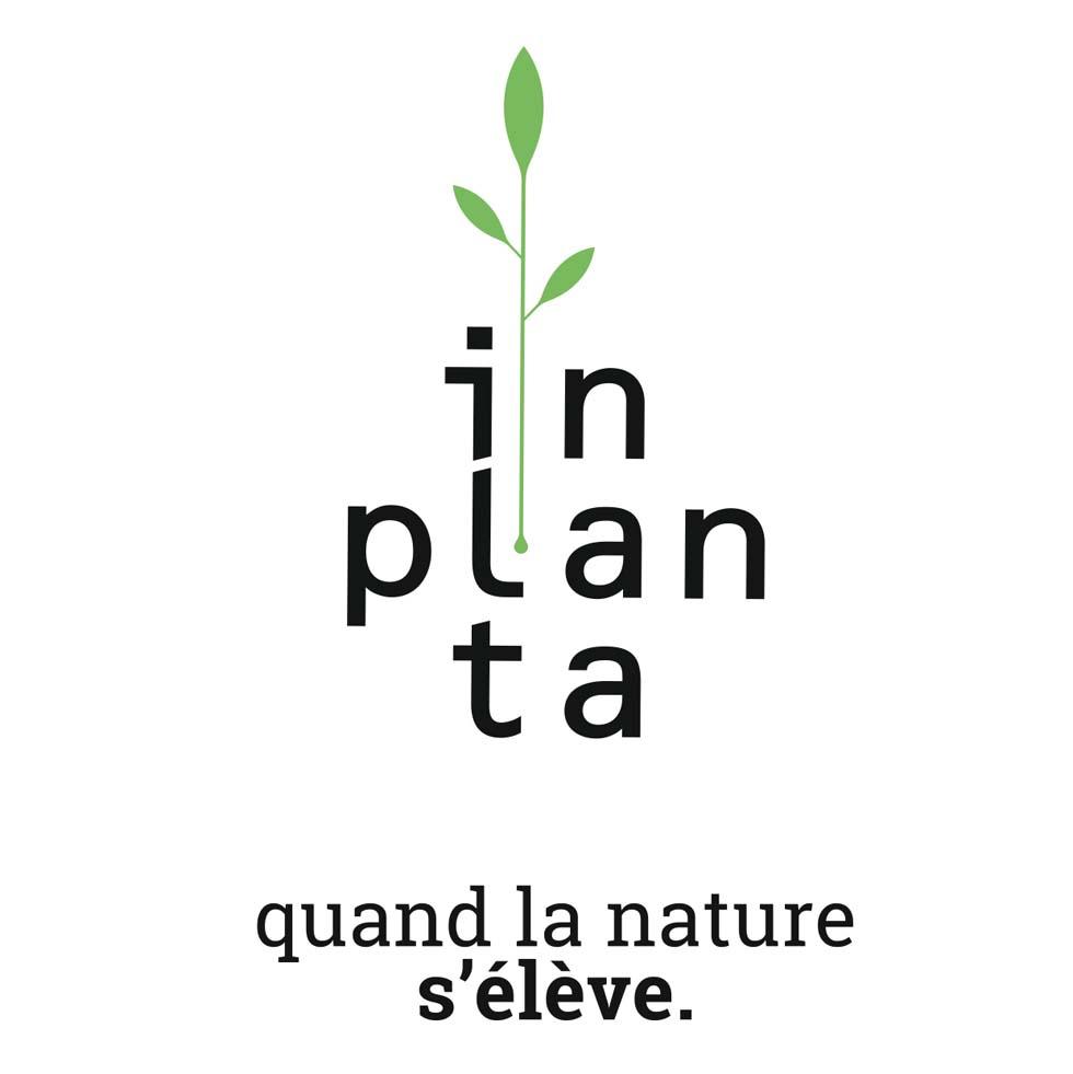 In planta (nouvelle fenêtre)