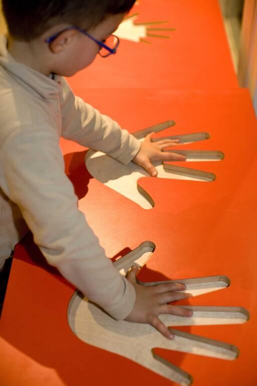 La taille des mains(ouverture du diaporama)