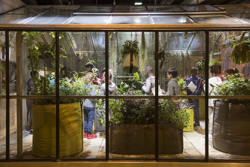 Le jardin cit des enfants 5 12 ans cit des sciences for Le jardin 75019