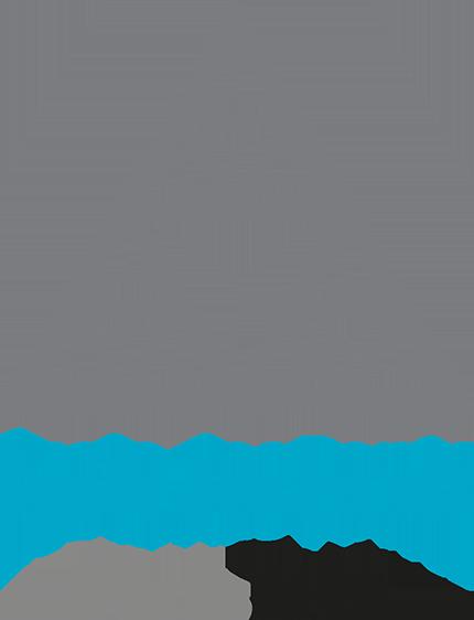 Site de l'École des Ponts ParisTech (nouvelle fenêtre)